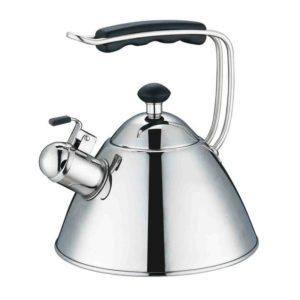 Philips EasySpeed Steam Iron